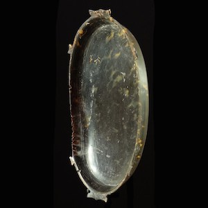 Micronesian Toluk valuable